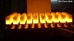 led fire bulb FLAME BULB AGING TEST