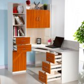 Modern Customizable Office Desk Computer Desk with Bookcase