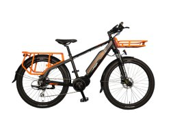 ebike with carriers