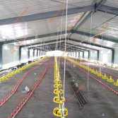 Nigeria broiler farm is being installing