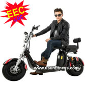 E scooter with remove battery