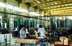 Production Line for Fluorescent Lamp-2