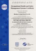 Occupational Health and Safety Managment Systems Certificate