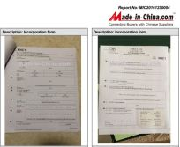 Made-in-China Audit