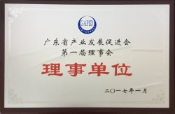 Council member of guangdong industry development promotion association