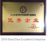 Excellent Company of Shenzhen in 2015