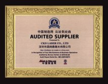 AUDITED SUPPLIER Made in China