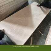 Okoume door size plywood