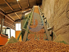 Wood pellet production site