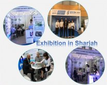 Dubai exhibition in December, 2017