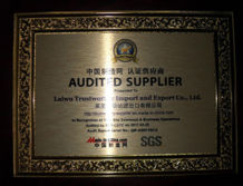 SGS Audit medal