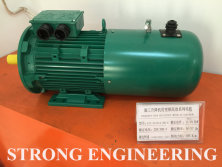 Inverter efficiency motor