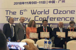 The 6th WFOT Meeting in Guangzhou