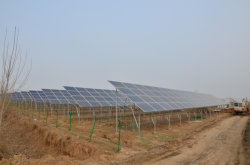 1.5MW green house ground solar mounting bracket in Thailand