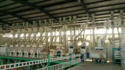wheat flour mill complete plant