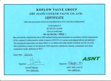 Qualified Certificate of NDT