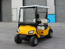 NEW DESIGN GOLF CART