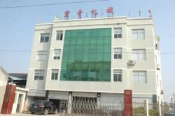 Ruian Hongyin Company Office Building