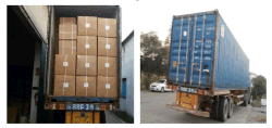 Factory-Full-Container-Loading-Pictures-1-40-HQ-Pet Products