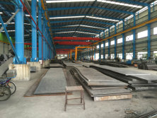 Professional and strong fabrication ability for steel structure buildingprefabricated house