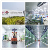 The engineering project for Bright Esunyes HeBei edible production base