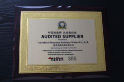 SGS for AUDITED SUPPLIER