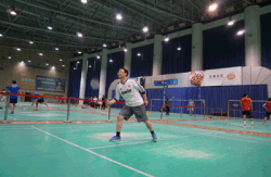 Badminton ball game