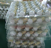 Mass production for G9 LED lamp