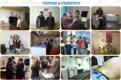 Visitors &Exhibition