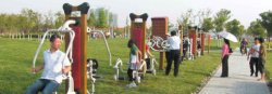 Outdoor fitness Installed--Xinyu Series