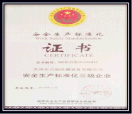 Safety Standard Producing Certification