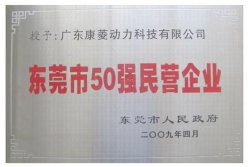 Dongguan Top 50 Private Enterprise
