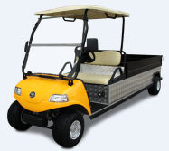 Electric Utility Car/Cart/Buggy, Sightseeing/Utility Bus 2 Passengers