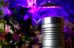 LED landscape&garden light
