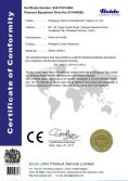 CE CERTIFICATE FOR CREAM WHIPPER