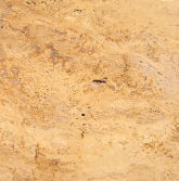 yellow travertine stone
