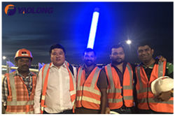 2017 Oman Muscat International Airport Landscaping Light Pole Project