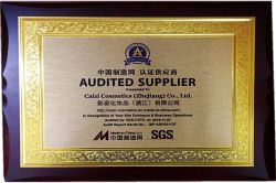 AUDITED SUPPLIER FROM MADE-IN-CHINA