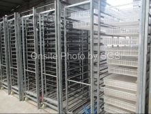 Industrial eggs incubator shows