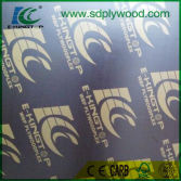 PRINTED LOGO E-KING TOP FILM FACED PLYWOOD