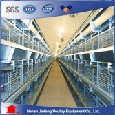 H type pullet cage equipment