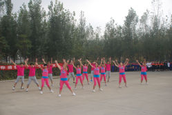 sports meeting-gymnaestrada