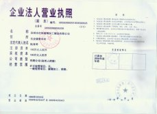 license in Chinese