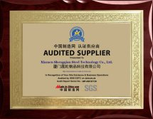 SGS audited supplier?certificate