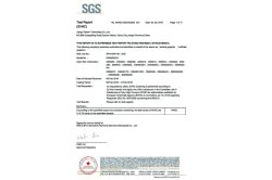 DSN REACH Test Report
