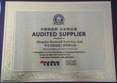 Audited Supplier 2013 by SGS