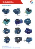 Electric Motor Series