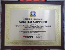SGS Audited Supplier Certificate by Made-in-China