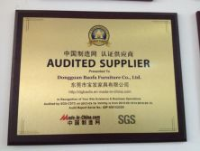 SGS Audit Supplier