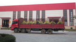 7 Sets of diesel engine to Heilongjiang